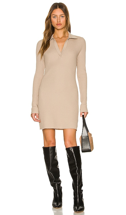 Long Sleeve Polo Mini Dress The Range $255 NEW