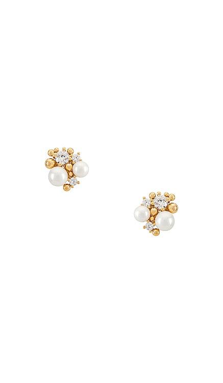 귀걸이 TAI Jewelry $60 베스트 셀러