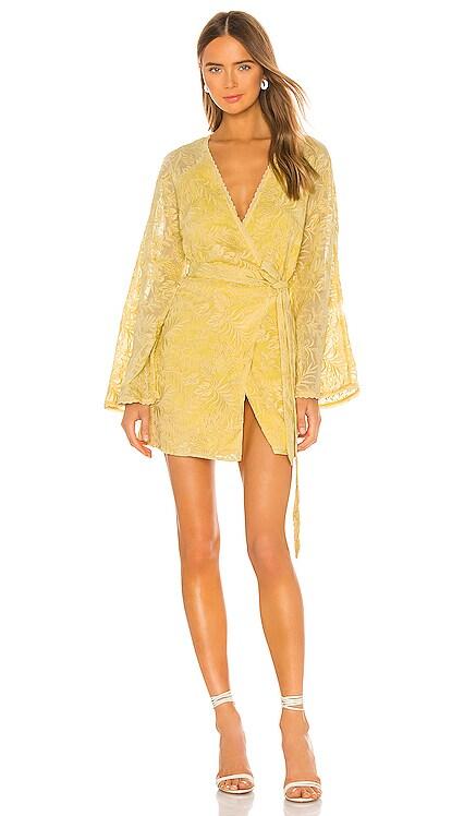 Robin Dress Tularosa $228 NEW ARRIVAL