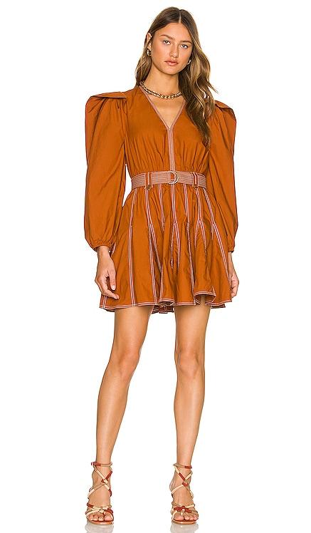 Corliss Dress Ulla Johnson $395 NEW