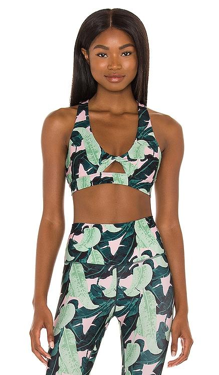 Tessa Bra Wildfox Couture $58 NEW