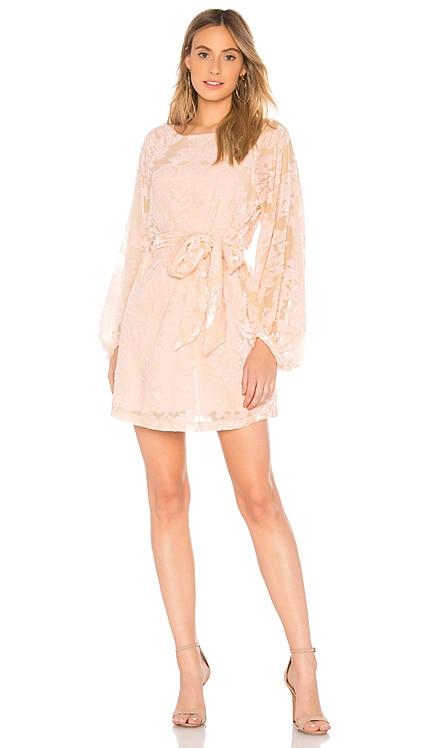 Bellflower Dress Yumi Kim $103