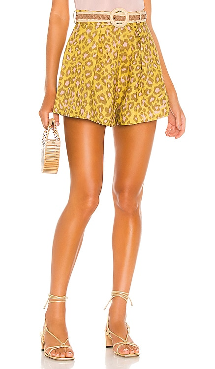Carnaby Leopard Short Zimmermann $375