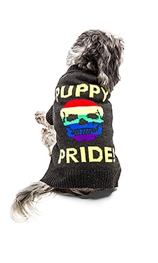 Puppy Pride Dog Sweater in Charcoal & Rainbow