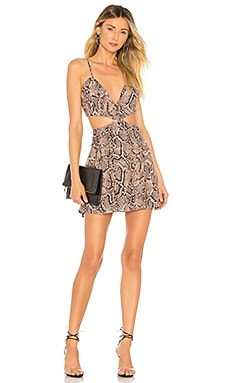 Bristol Snake Print Dress About Us $66 NEW ARRIVAL