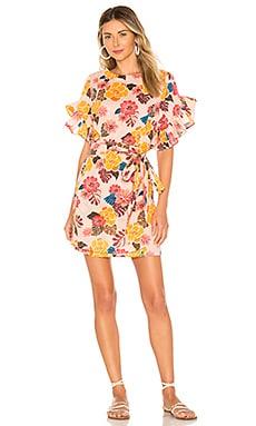 Phoenix Dress Acacia Swimwear $87