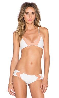 Acacia Swimwear Pupukea Bikini Top in Haupia