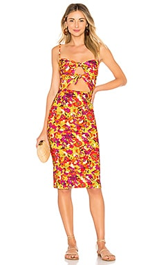 ПЛАТЬЕ FRUITS PRINT ADRIANA DEGREAS $169