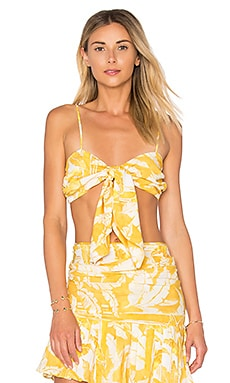 Tropical Leaves Knot Top