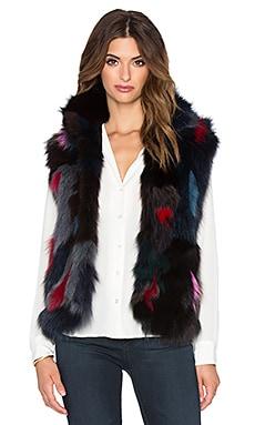 Adrienne Landau Fox Fur Vest in Multi