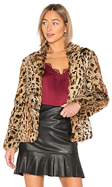 Rabbit Jacket Adrienne Landau $198