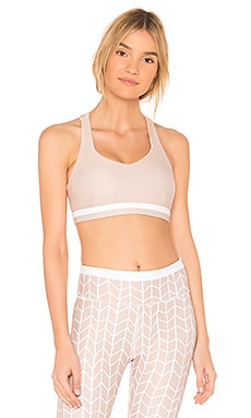 Sand Storm Sports Bra All Fenix $47