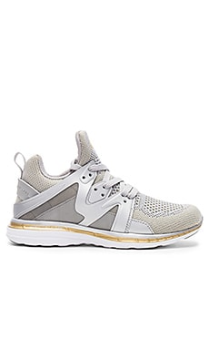 Ascend Sneaker in Metallic Silver & Gold