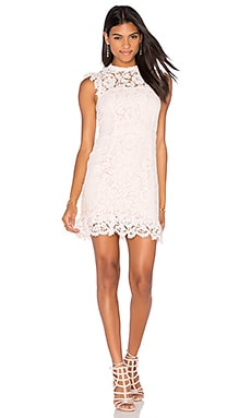 aijek Into The Night Lace Mini Dress in Blush
