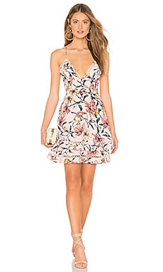 Gabriella Floral Mini Dress aijek $92 (FINAL SALE)