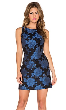 Alice + Olivia Ilene A-Line Open V Back Dress in Black & Blue