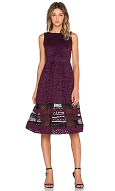 Alice + Olivia Odelia Midlength Dress in Plum & Black