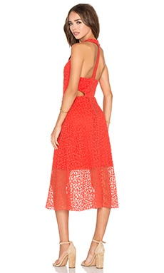 Alice + Olivia Noreen Dress in Light Poppy