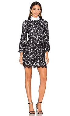 Alice + Olivia Terisa Fit & Flare Lace Dress in Black & White