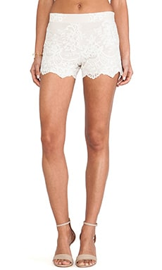 High Waisted Lace Short in Nude