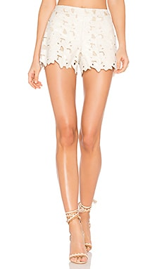 Amaris Short in Cream