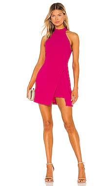 Raelynn Dress Amanda Uprichard $211 NEW
