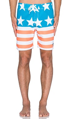 Ambsn Rocko Boardshort in Multi