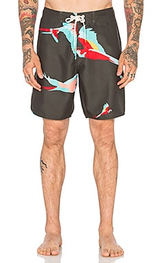 Ambsn Parrot Boardshort in Coal