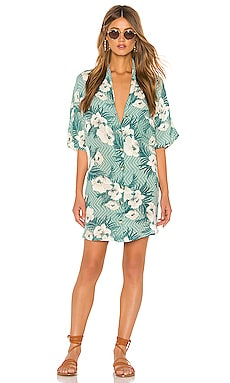 Island Oasis Button Up Dress AMUSE SOCIETY $66