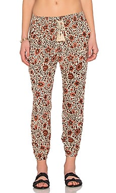 AMUSE SOCIETY Tash Pant in Peach