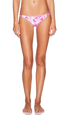 AMUSE SOCIETY Everly Painted Palm Skimpy Bikini Bottoms in Vivid Magenta