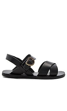 Little Socrates Sandal