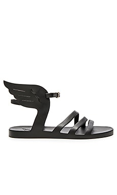 Ikaria Jellie Sandal in Black