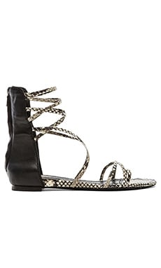 Ash Octopus Sandal in Roccia & Black