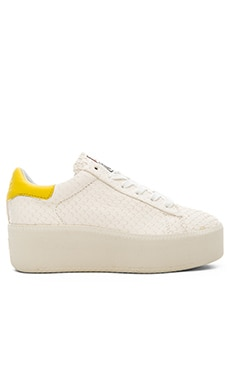 Ash Cult Sneaker in Off White & Yellow