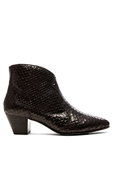 Ash Hurricane Bootie in Black