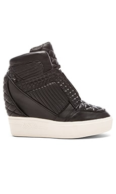 Ash Azimut Wedge Sneaker in Black