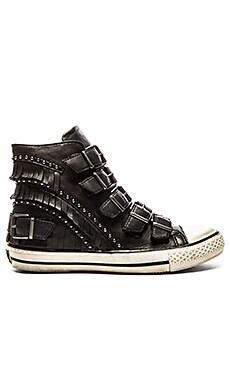 Ash Venin Sneaker in Black & Black