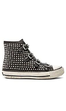 Ash Vicious Sneaker in Black & Off White