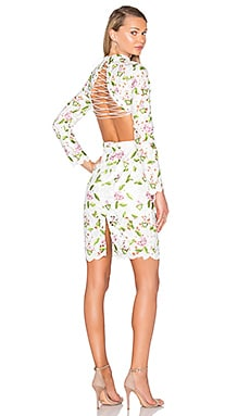 ASILIO Object Of Desire Dress in Floral