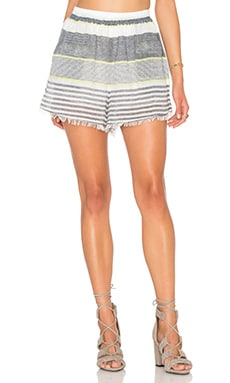 ASTR Ibizia Short in Lime Stripe