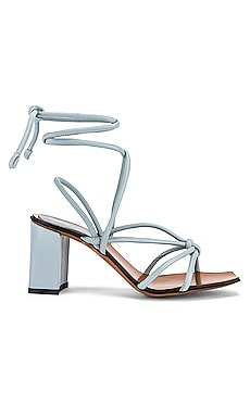 Andria Strappy Sandal ATP Atelier $248
