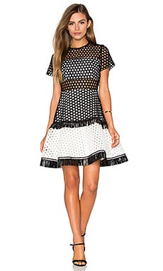 Cinthia Dress in Black White Circle Embroidery