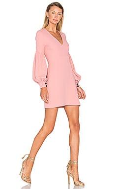 Ellena Dress in Ash Pink