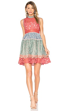 Vedette Dress in Multicolor Lace