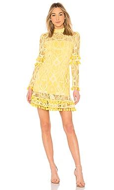 Callisto Dress Alexis $561