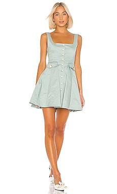 Nena Dress Alexis $594 NEW ARRIVAL