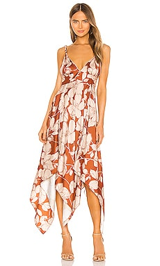 Gaiana Dress Alexis $524 NEW ARRIVAL