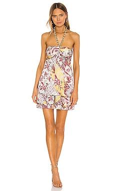 Irati Dress Alexis $327
