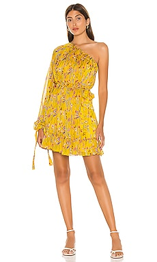 Edyta Dress Alexis $139
